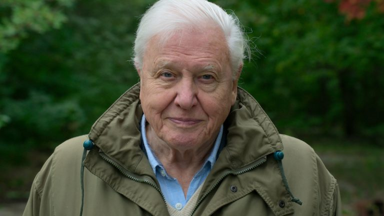 Darfor Ska Du Se David Attenborough A Life On Our Planet Pa Netflix